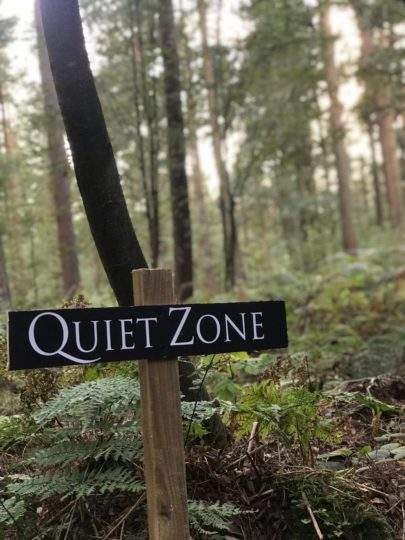silent walking on the Swinton Estate forest bathing north yorkshire